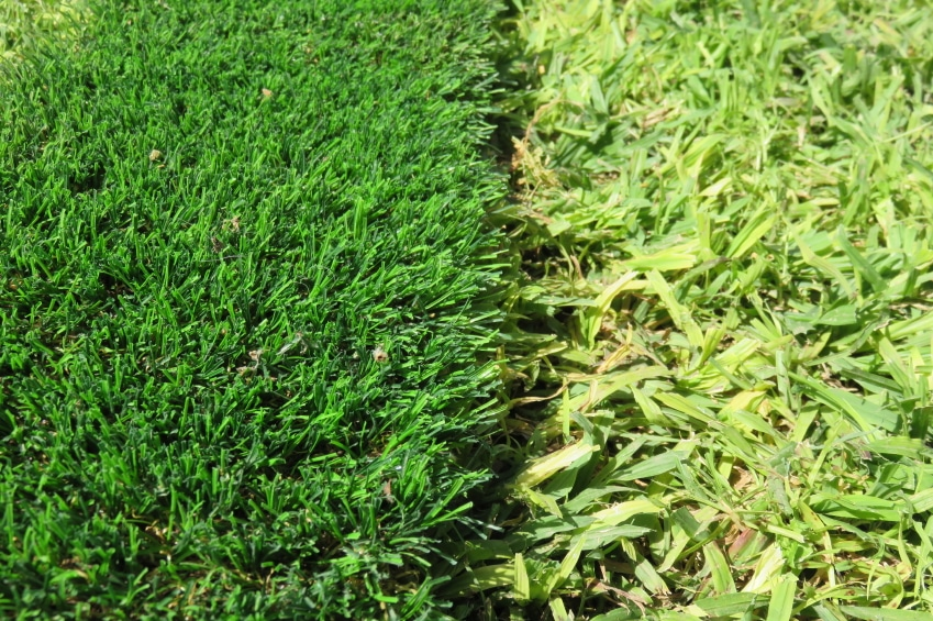What Will You Do WIth Artificial Grass